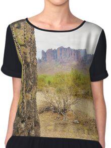 Superstition Cactus Women's Chiffon Top
