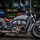 Indian Scout by Steve Baird