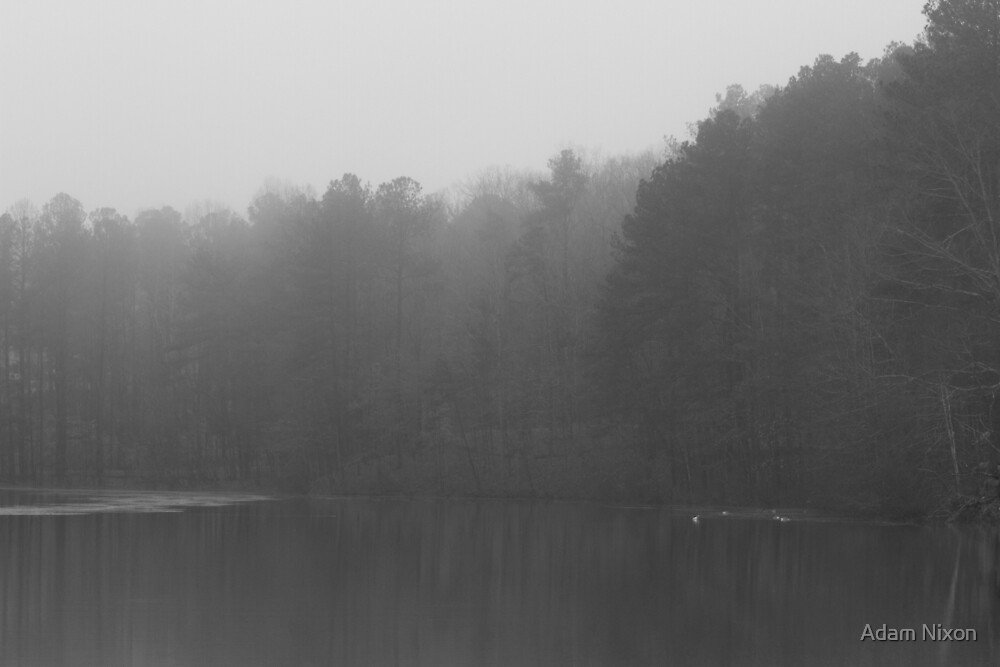 Foggy tree lined lake by Adam Nixon