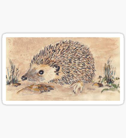 Hedgie, the African Hedgehog Sticker