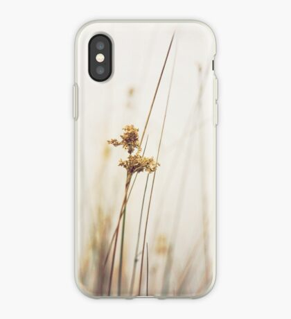 Bulrush iPhone Case