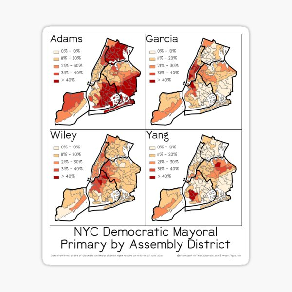 2021 NYC Democratic Mayoral Primary Results Sticker