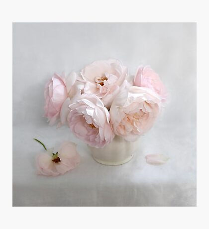 Bouquet of Pastel June Roses #2 Photographic Print