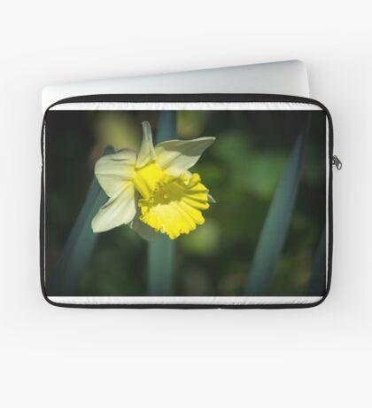 A Pretty little Daffodil Laptop Sleeve
