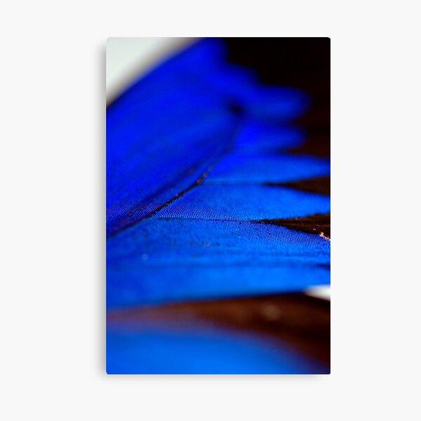 Shimmering Blue Canvas Print