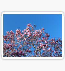 Magnolia Sky Sticker