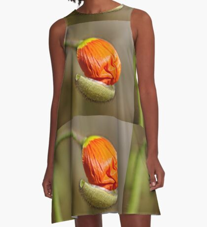 Poppies take off their coats in the sun A-Line Dress