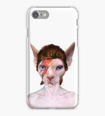 Aladdin Sphynx iPhone Case/Skin