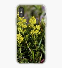 Galium Verum (Lady's Bedstraw), Inishmore, Aran Islands iPhone Case