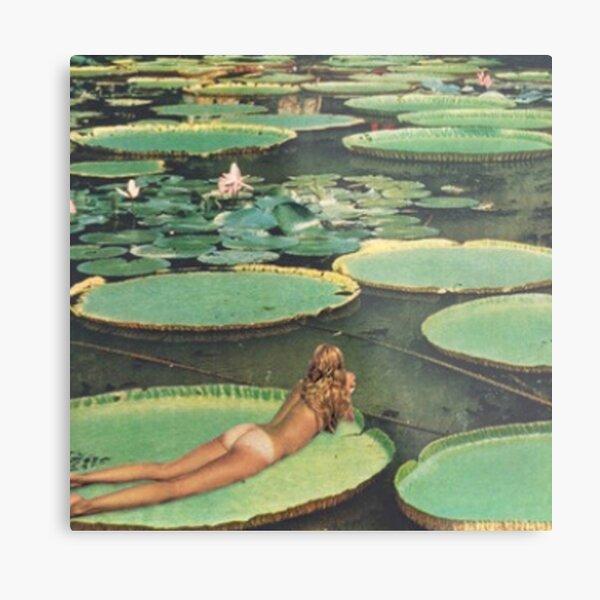 Lily Pond Lane Metal Print