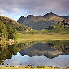 Langdale Reflections at Blea Tarn English Lake District by Martin Lawrence