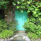 The Turquoise Door by Fara