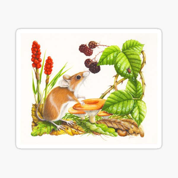 Wood Mouse Sticker