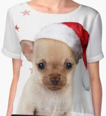 Cute Chihuahua dog in ladle Women's Chiffon Top