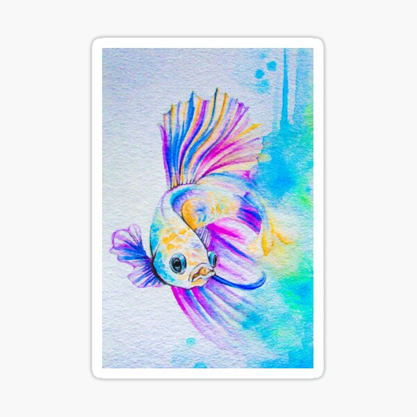 Beta Fish Sticker