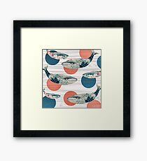 Whale and Polka Dots Framed Print