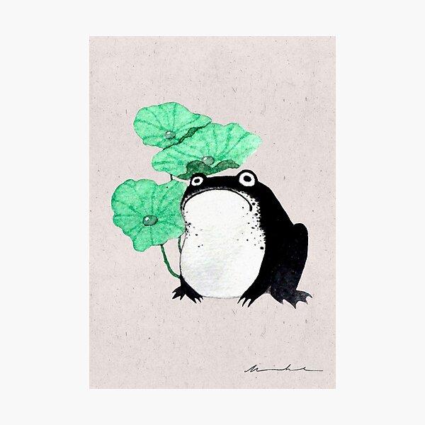 Sad Toad | Chubby Black Frog Photographic Print