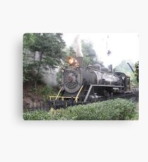 Dollywood Express Canvas Print