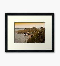 Driftwood On A Reedy Shore. Framed Print