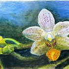 Phalaenopsis Orchid watercolor pencils ACEO by IrVia