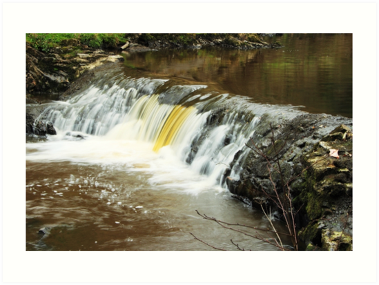 Mill River 2 by Agnes McGuinness