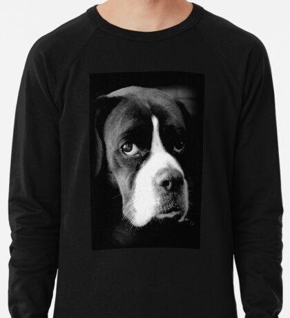 Arwen - Weiblicher Boxer-Hund - Boxer-Hunde-Reihe Leichtes Sweatshirt