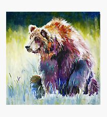 The Rainbow Bear Photographic Print