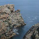 Layered Sedimentary Rock at Cape Bonavista, NL, Canada by Gerda Grice