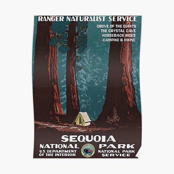 1938 Sequoia National Park Vintage Poster Poster