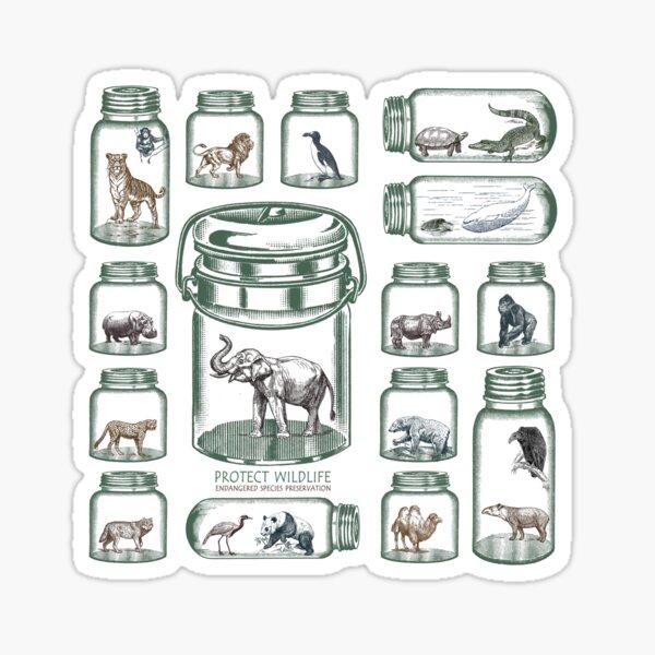 Protect Wildlife - Endangered Species Preservation  Sticker