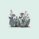 Hand-drawn flower illustration by JannekeMeekes