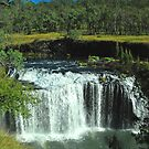 Millstream Falls by Penny Smith
