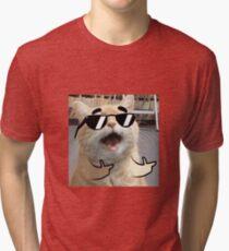 Cool Cat on it Tri-blend T-Shirt