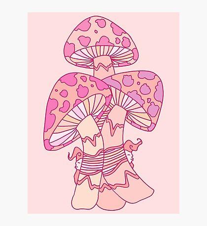 Pink Mushrooms Photographic Print
