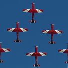 Roulettes by diggle