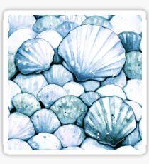Sea Shells Teal Sticker