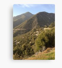 Mountain Brush Canvas Print