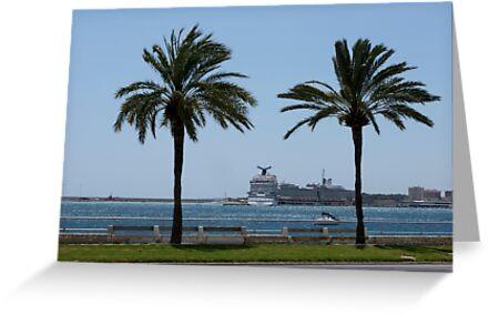 Palma de Mallorca harbor by Frits Klijn (klijnfoto.nl)