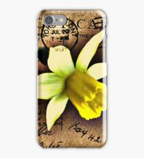 Daffodil on Vintage 1909 Postcard iPhone Case/Skin