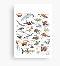 A to Z of Amazing Animals Metal Print