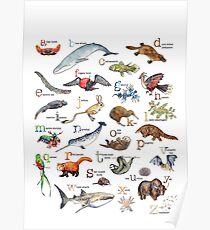 A to Z of Amazing Animals Poster