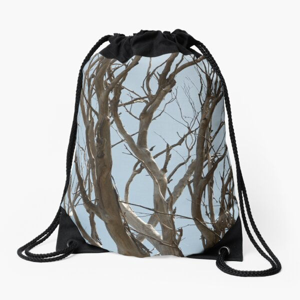 Bare tree branches against a pale spring sky Drawstring Bag