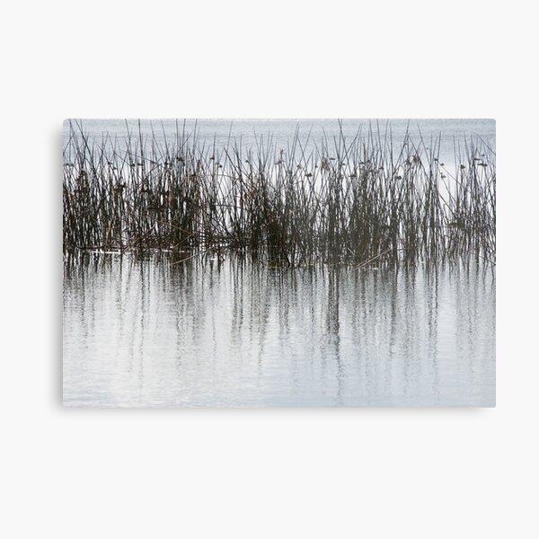 Birds on the lake Metal Print
