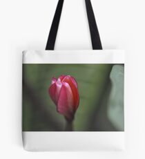 Be with you, solo flower: Got Featured Work:) Tote Bag