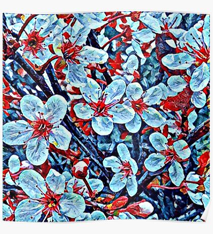 Red and turquoise flowers Poster