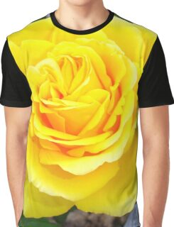 Golden Yellow Rose with Garden Background Graphic T-Shirt