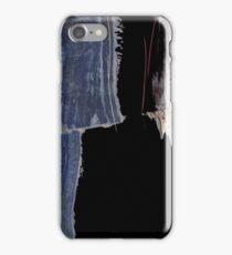 Artotem IV - oil paint on wood panel  iPhone Case/Skin