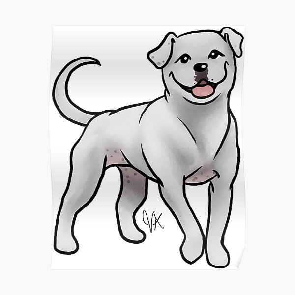 American Bulldog - White Poster