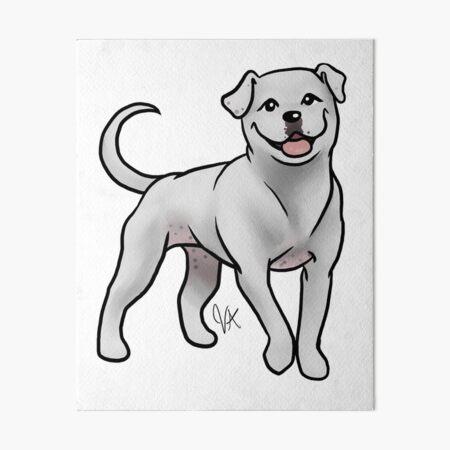 American Bulldog - White Art Board Print