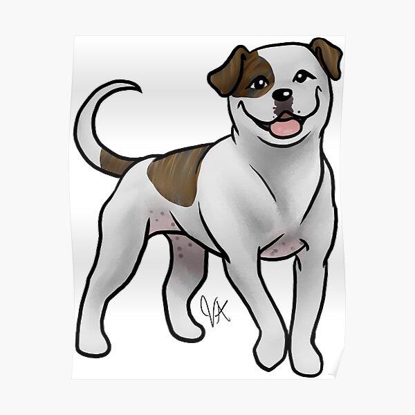 American Bulldog - White and Brindle Poster